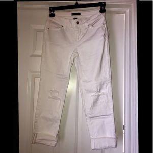 WHBM White Jean Crops